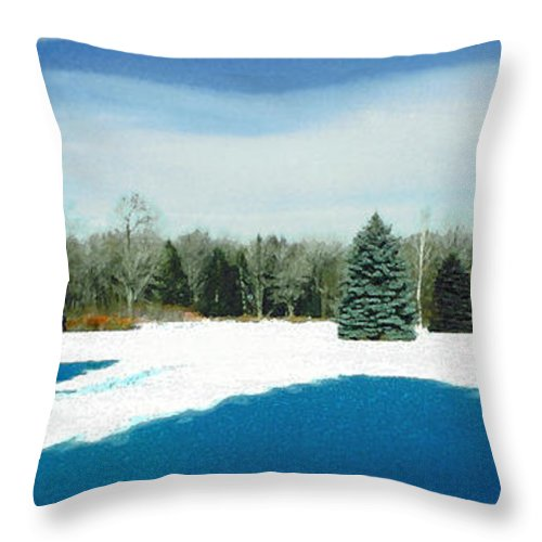 Landscape Throw Pillow featuring the photograph Meadow Snow by Steve Karol