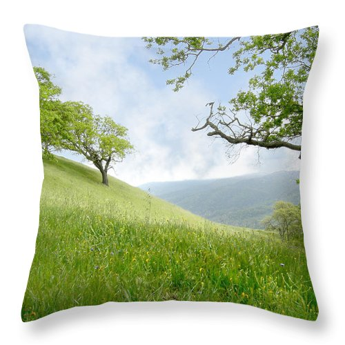 Landscape Throw Pillow featuring the photograph Meadow View Spring by Karen W Meyer