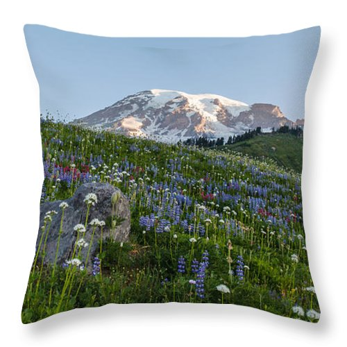 Rainier Throw Pillow featuring the photograph Meadows Of Glory by Mike Reid