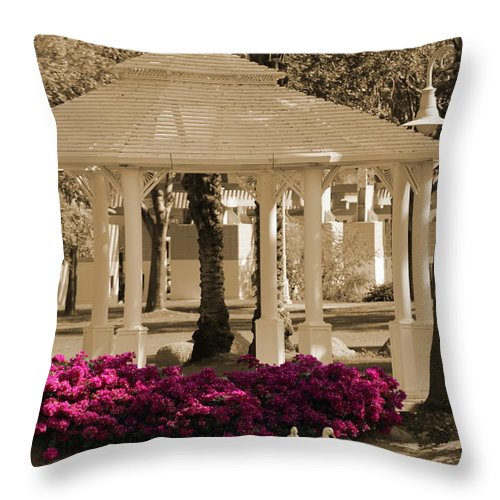 Focal Color Throw Pillow featuring the photograph Meet Me At The Gazebo by Colleen Cornelius