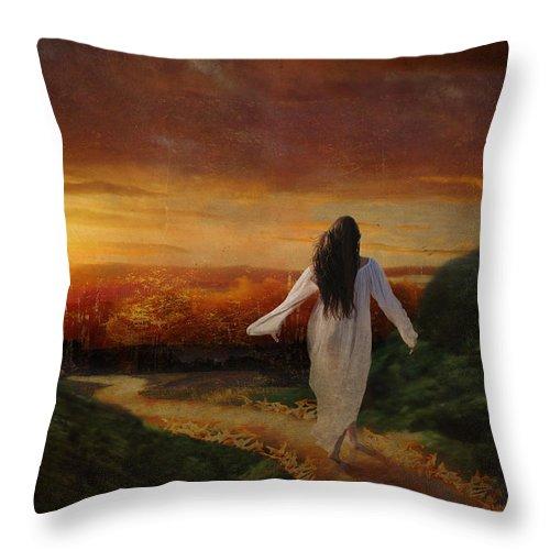 Sunset Throw Pillow featuring the digital art Melt by Lianne Schneider