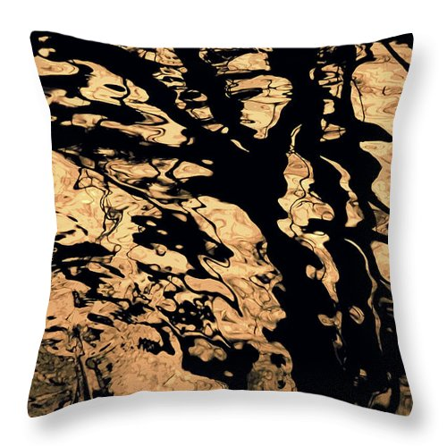 Tree Reflection Throw Pillow featuring the photograph Melted Chocolate by Yulia Kazansky