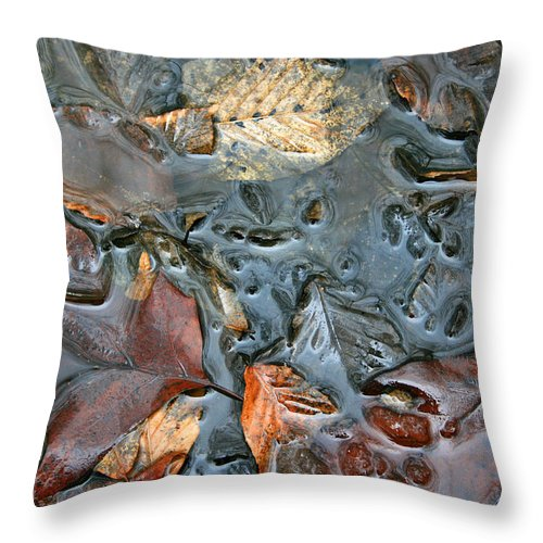 Nature Fall Leaf Leaves Colorful Water Melt Melted Reflect Reflection Outdoors Forest Woods Light Throw Pillow featuring the photograph Melted Colors by Andrei Shliakhau