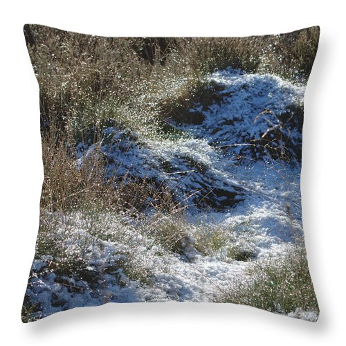 Melting Throw Pillow featuring the photograph Melting Snow On Plants by Adrian Wale