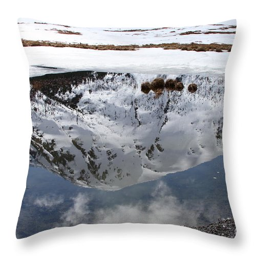Water Throw Pillow featuring the photograph Melting View by Rick Monyahan