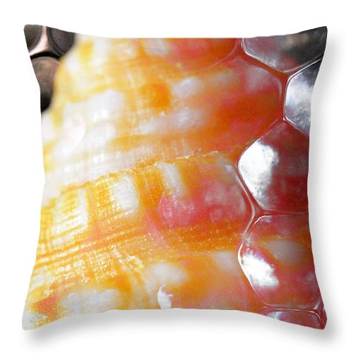 Skiphunt Throw Pillow featuring the photograph Merge 2 by Skip Hunt
