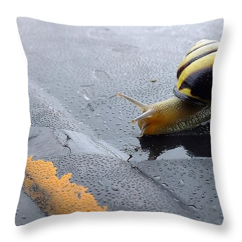Garden Snail Throw Pillow featuring the photograph Merging In Traffic by Andy Klamar