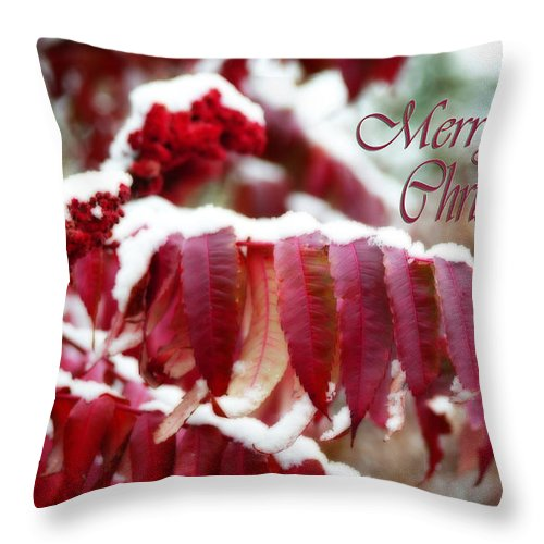 Christmas Card Throw Pillow featuring the photograph Merry Christmas Red Leaves by Cathy Beharriell