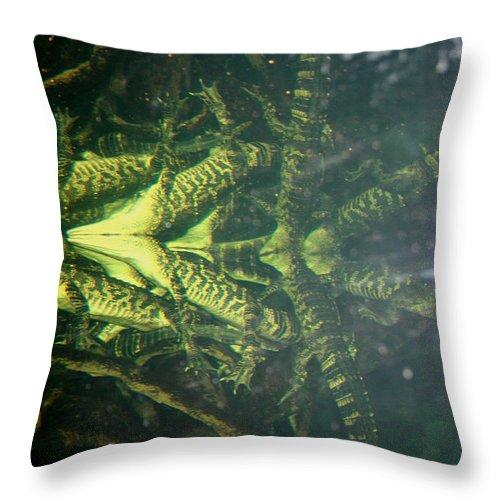 Cayman Throw Pillow featuring the photograph Mess O Caymans by David Dunham