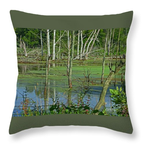 Marsh Throw Pillow featuring the photograph Messy Beauty by Ann Horn