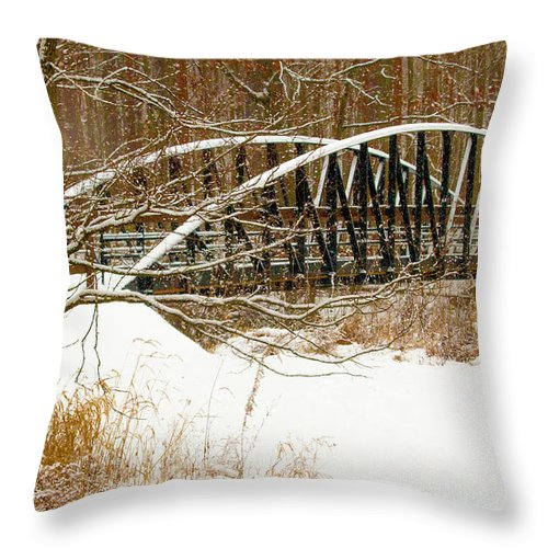 Winter Landscape Throw Pillow featuring the photograph Metro Park II by Dennis R Bean
