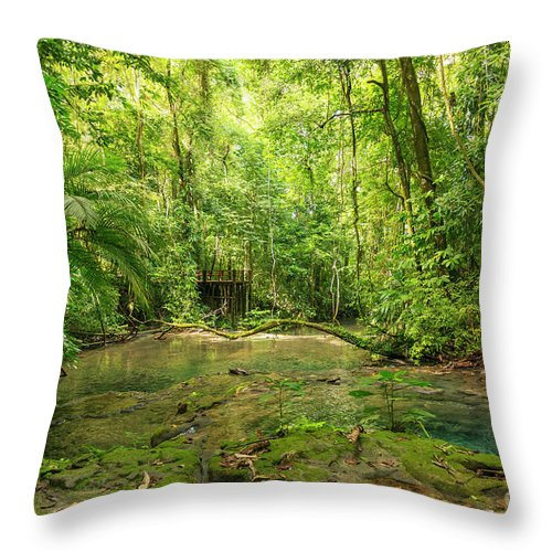 Nature Throw Pillow featuring the photograph Mexico Jungle Lookout by Tim Hester