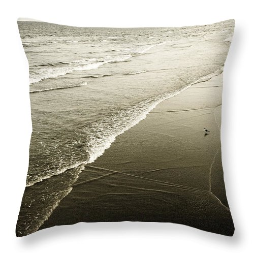 Ocean Throw Pillow featuring the photograph Mid-summer Morning by Marilyn Hunt