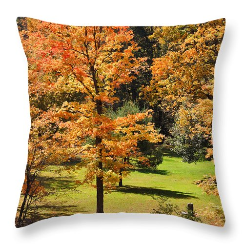 Travel Throw Pillow featuring the photograph Middle Falls Viewpoint In Letchworth State Park by Louise Heusinkveld