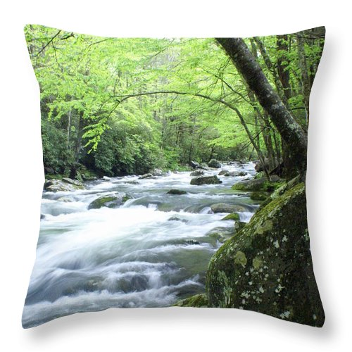 Stream Rive Throw Pillow featuring the photograph Middle Fork River by Marty Koch