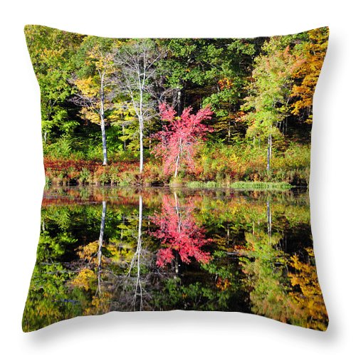 Fall Foliage Throw Pillow featuring the photograph Midway by Tom Heeter