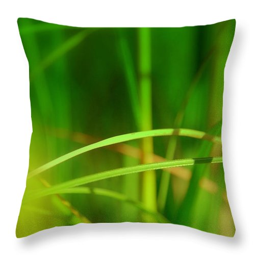 Mikado Throw Pillow featuring the photograph Mikado by Susanne Van Hulst