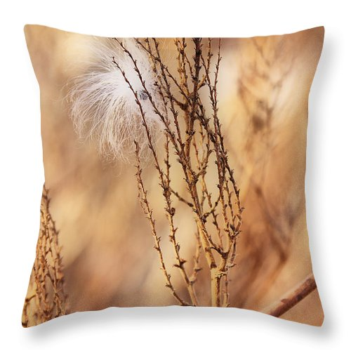 Milkweed Throw Pillow featuring the photograph Milkweed In The Breeze by Deborah Benoit