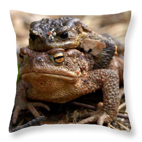 Seitseminen Throw Pillow featuring the photograph Mine by Jouko Lehto