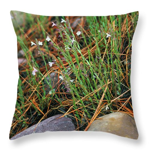 Forest Floor Throw Pillow featuring the photograph Miniature Bells by Randy Oberg