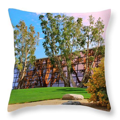 Palm Springs Throw Pillow featuring the photograph Mirror 2 by William Dey