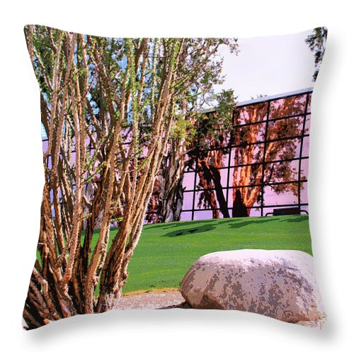 Palm Springs Throw Pillow featuring the photograph Mirror Mirror Palm Springs by William Dey
