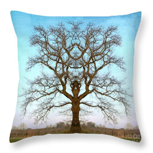 Tree Throw Pillow featuring the photograph Mirror Tree by Digital Crafts