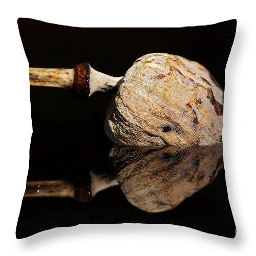 Anacampsis Throw Pillow featuring the photograph Mirroring by Michal Boubin