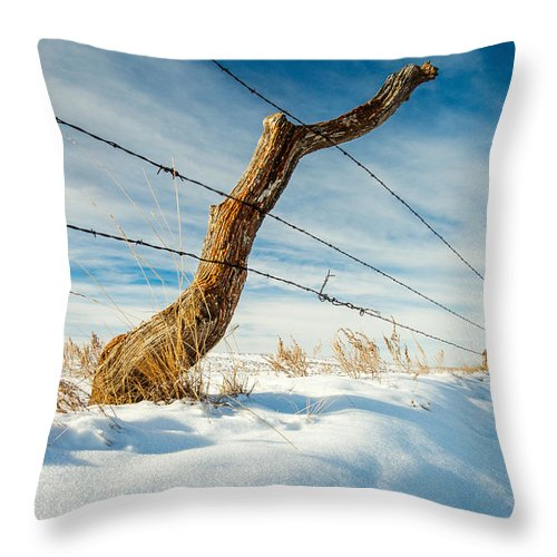 Crooked Throw Pillow featuring the photograph Misshapen by Todd Klassy