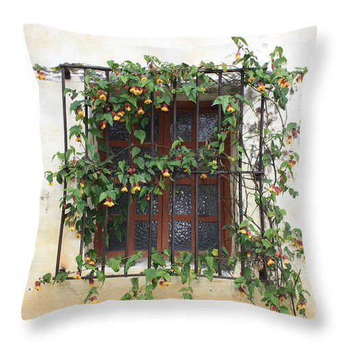 Window Throw Pillow featuring the photograph Mission Window With Yellow Flowers by Carol Groenen