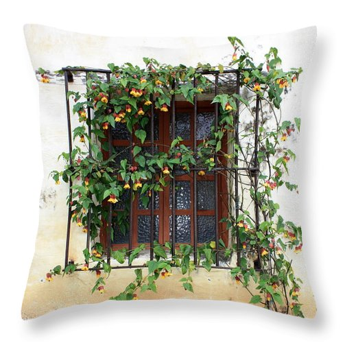 Mission Window Throw Pillow featuring the photograph Mission Window With Yellow Flowers Vertical by Carol Groenen