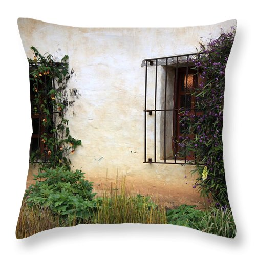 Vines Throw Pillow featuring the photograph Mission Windows by Carol Groenen