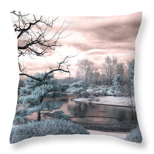 Missouri Botanical Garden Throw Pillow featuring the photograph Missouri Botanical Garden Infrared Pond Blue by Jane Linders