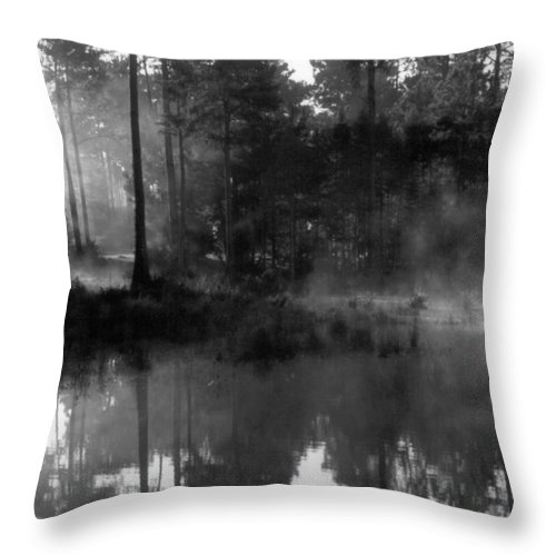 Swamp Throw Pillow featuring the photograph Mist On The Pond by Suzanne Gaff