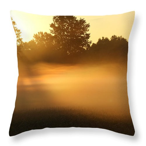 Morning Throw Pillow featuring the photograph Mist Waves by Cathy Beharriell