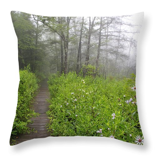 Cranberry Glades Botanical Area Throw Pillow featuring the photograph Misty Morning Cranberry Glades by Thomas R Fletcher