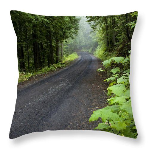 Road Throw Pillow featuring the photograph Misty Mountain Road by Idaho Scenic Images Linda Lantzy