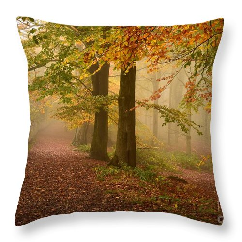Woodland Throw Pillow featuring the photograph Misty Pathways by Kerry Palmer