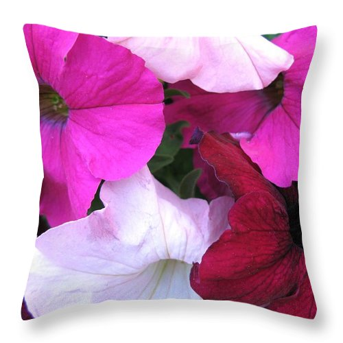 Petunias Throw Pillow featuring the photograph Mixed Petunias by Carol Sweetwood