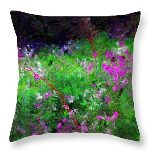 Digital Photograph Throw Pillow featuring the photograph Mixed Up by David Lane