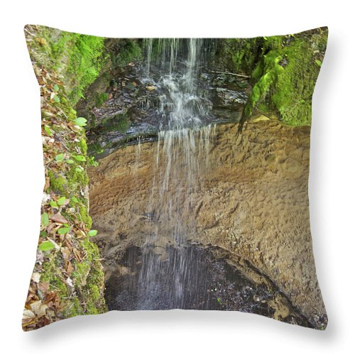 Mna Memorial Falls Throw Pillow featuring the photograph Mna Memorial Falls by Michael Peychich