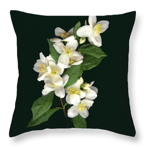 White Flowers Throw Pillow featuring the photograph Mock Orange by Sandi F Hutchins