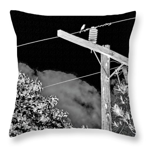 Mockingbird Throw Pillow featuring the photograph Mockingbird On A Wire by Gina O'Brien