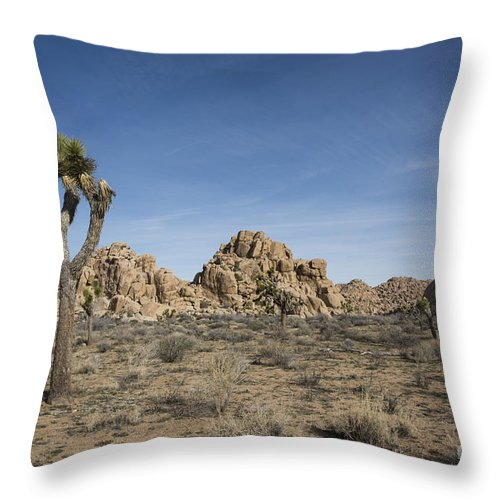 America Throw Pillow featuring the photograph Mohave Desert by Juli Scalzi