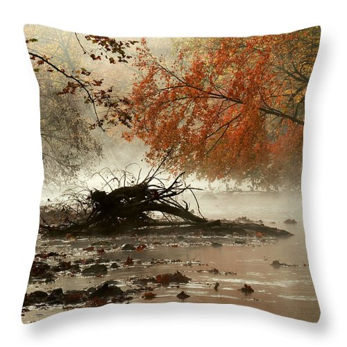 Autumn Throw Pillow featuring the photograph Mohican In Autumn by Amanda Kiplinger