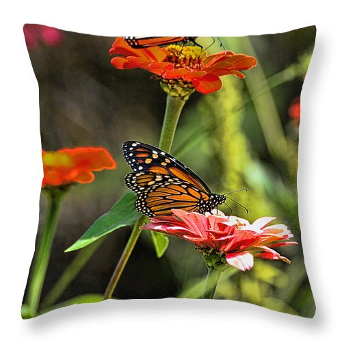 Monarch Butterfly Throw Pillow featuring the photograph Monarch 8 by Edward Sobuta