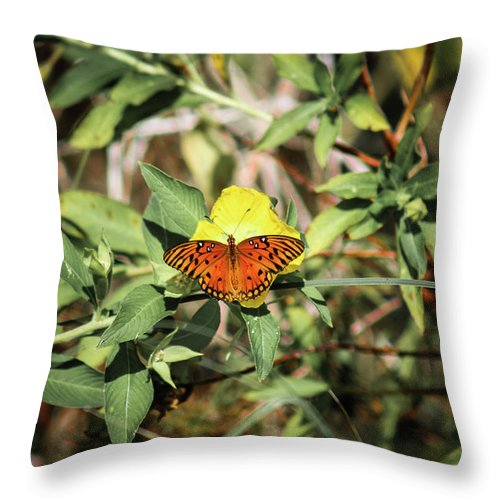 Daytime Throw Pillow featuring the photograph Monarch Butterfly by Scott Dry