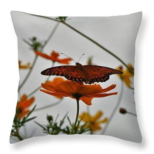 Monarch Butterflies Throw Pillow featuring the photograph Monarch on the River by Leon Hollins III