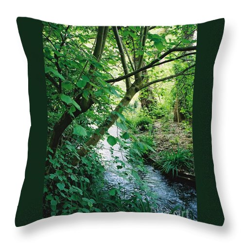 Photography Throw Pillow featuring the photograph Monet's Garden Stream by Nadine Rippelmeyer
