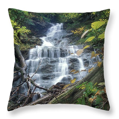 Waterfall Throw Pillow featuring the photograph Money Brook Falls Mount Greylock by John Burk